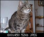 Klicke auf die Grafik für eine größere Ansicht  Name:Lisbeth3.jpg Hits:245 Größe:51,7 KB ID:10702
