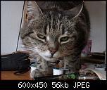 Klicke auf die Grafik für eine größere Ansicht  Name:Lisbeth5.jpg Hits:207 Größe:55,6 KB ID:10704
