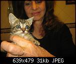 Klicke auf die Grafik für eine größere Ansicht  Name:k-Katzenbabies2 - 10.07.2016.jpg Hits:383 Größe:31,4 KB ID:12295